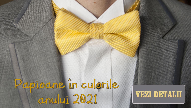 papioane in culorile anului 2021